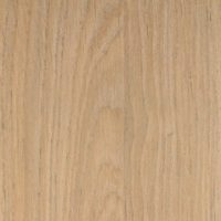 Salina Oak